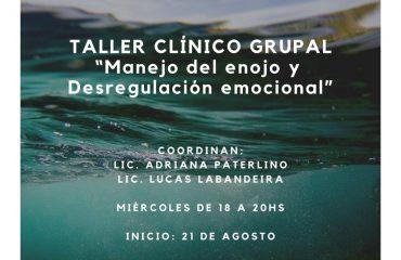 Manejo del enojo y Desregulación emocional